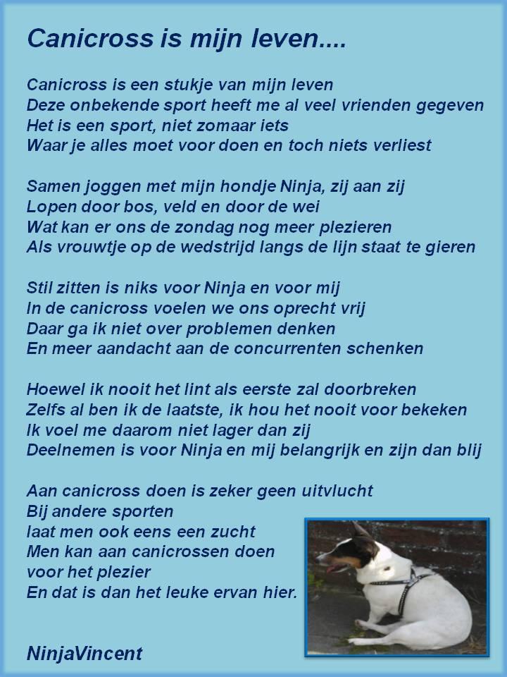 Gedichten Allerleivan De Hak Op De Tak Hondjes Pagina