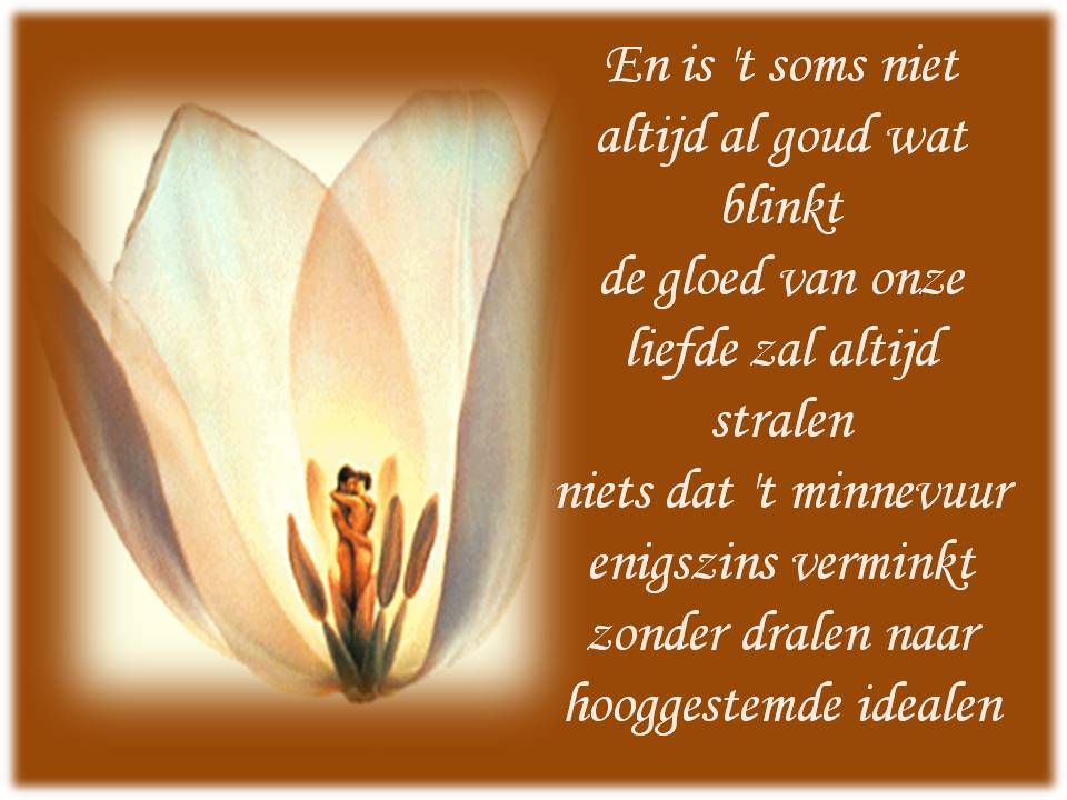 Mooie Liefdesteksten Uit Een Valentijnsgedicht Voor Mij, Door Alter In 2008  Geschreven.
