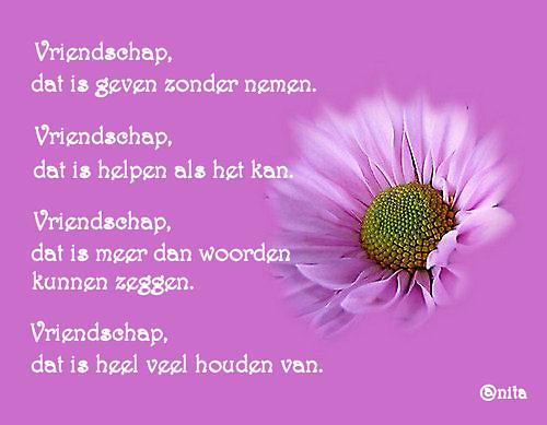 gezegden en spreuken vriendschap Spreuken En Gezegden Vriendschap   ARCHIDEV gezegden en spreuken vriendschap